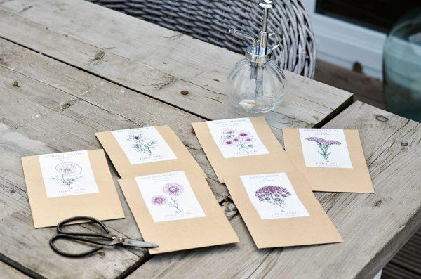 Blumensamen von Jora Dahl